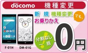 docomo DM-01G//F01H 一括0円